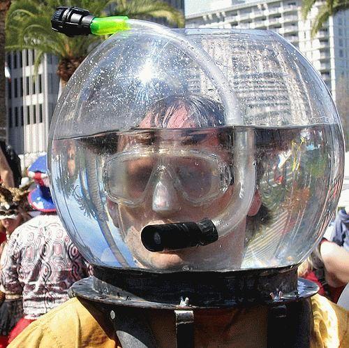 snorklerinfishbowl