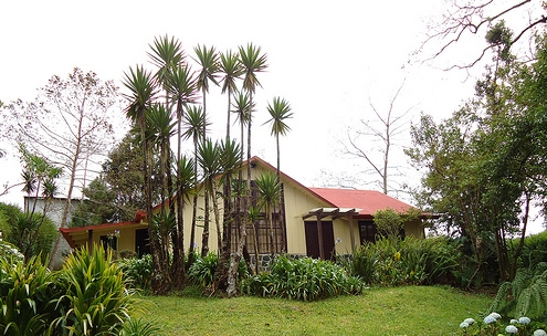 Jorge Arroyo Cottage Near Poas