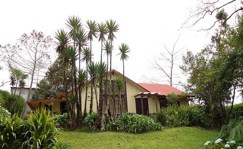 Jorge Arroyo Cottage Near Poas