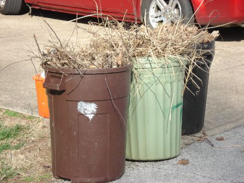 Trash Cans Full of Weeds
