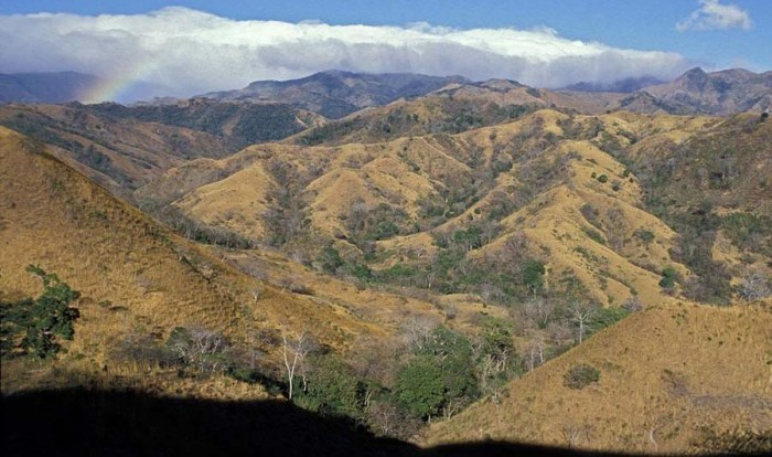 dry_season_Costa_Rica