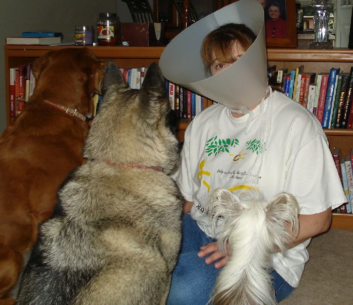 Denise_ConeOfShame