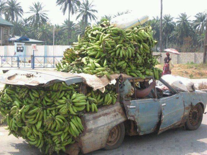 The-Costa-Rica-Banana-Mobile